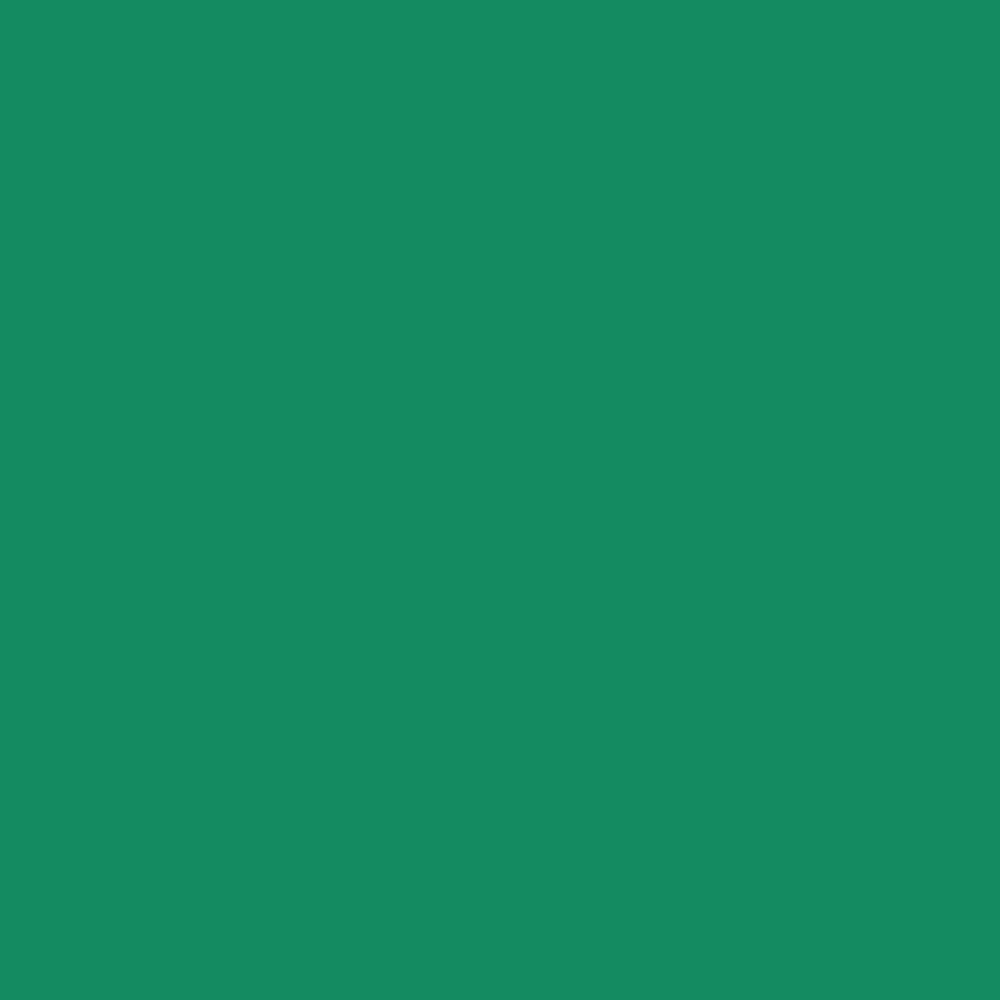 photography studio london backdrop colour greenscreen